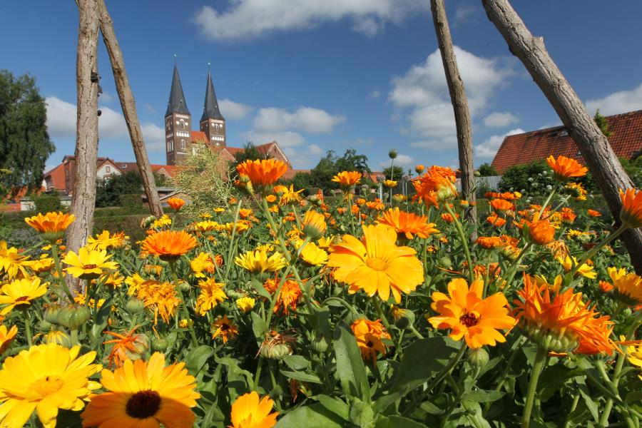 Monastery garden at the monastery in Jerichow in the Altmark © Frank Boxler, IMG Sachsen-Anhalt